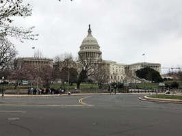 Visitors at the U.S. Capitol
